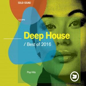 Deep House / Pop Hits Best of 2016