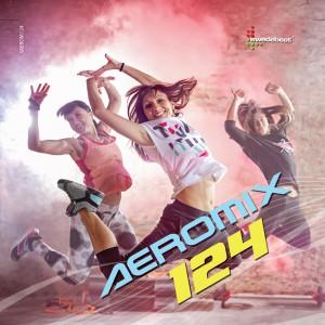 Aeromix 124