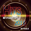 Hits 2016 The Best of Summer Charts